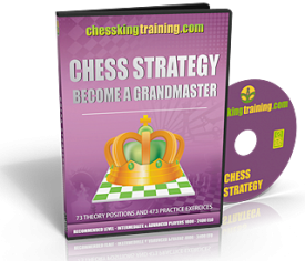 Chess King Training Strategy Software Training DVD