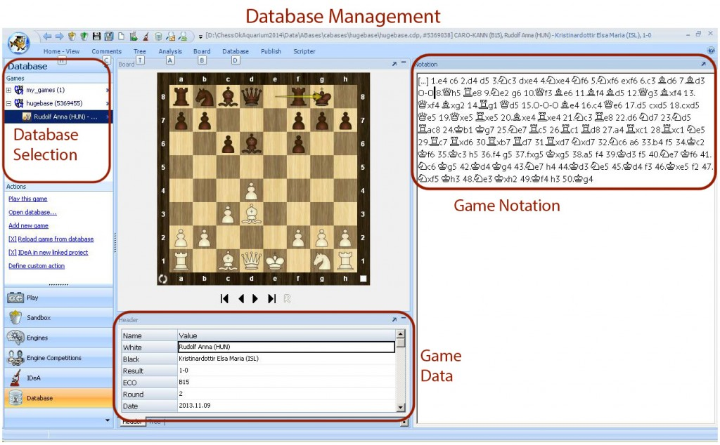 Chess Software for Mac and PC | Chess King » Chess DVD's